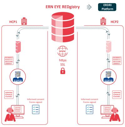 redgistry-stakeholders